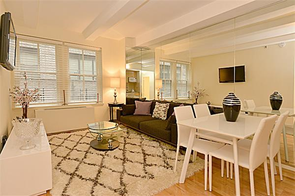Newly Renovated Furnished 1 Bedroom in the Heart of Manhattan